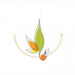 Logo Institut VERTONE
