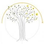 Formation conduite du changement - Institut VERTONE