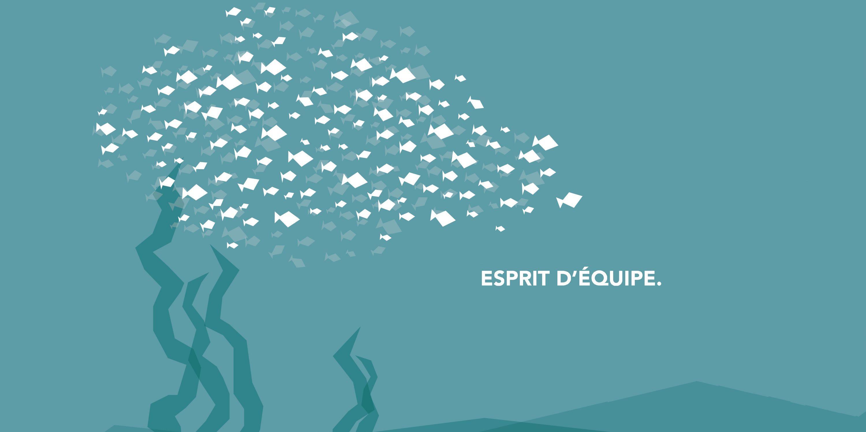 ESPRIT D'EQUIPE