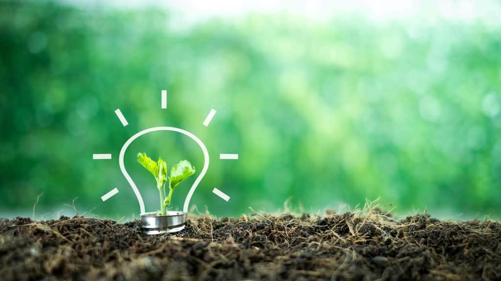 VERTONE cabinet de conseil stratégie transition transformation engagement social engagement écologique